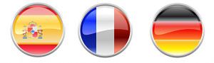 casellario giudiziale in spagnolo tedesco francese